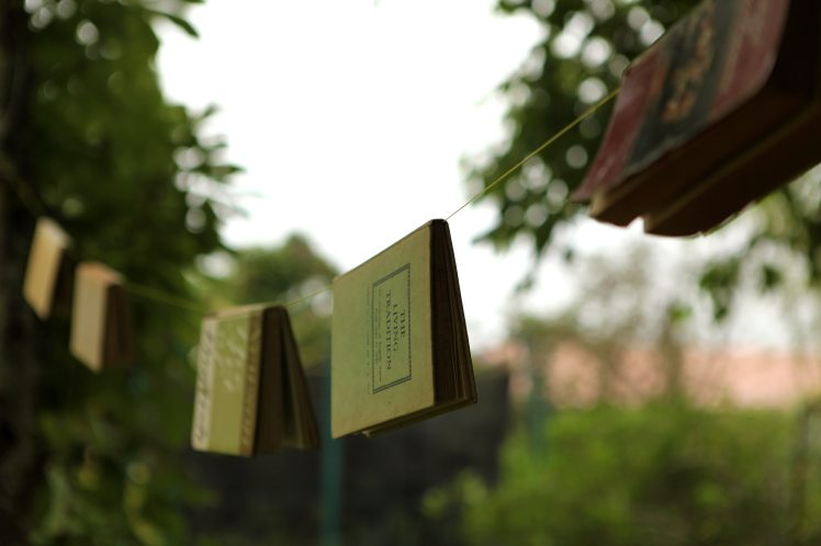 4k-wallpaper-blur-books-1599991.jpg