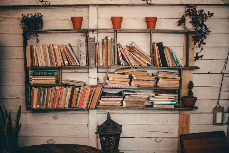 books-bookshelf-bookshelves-2177482.jpg